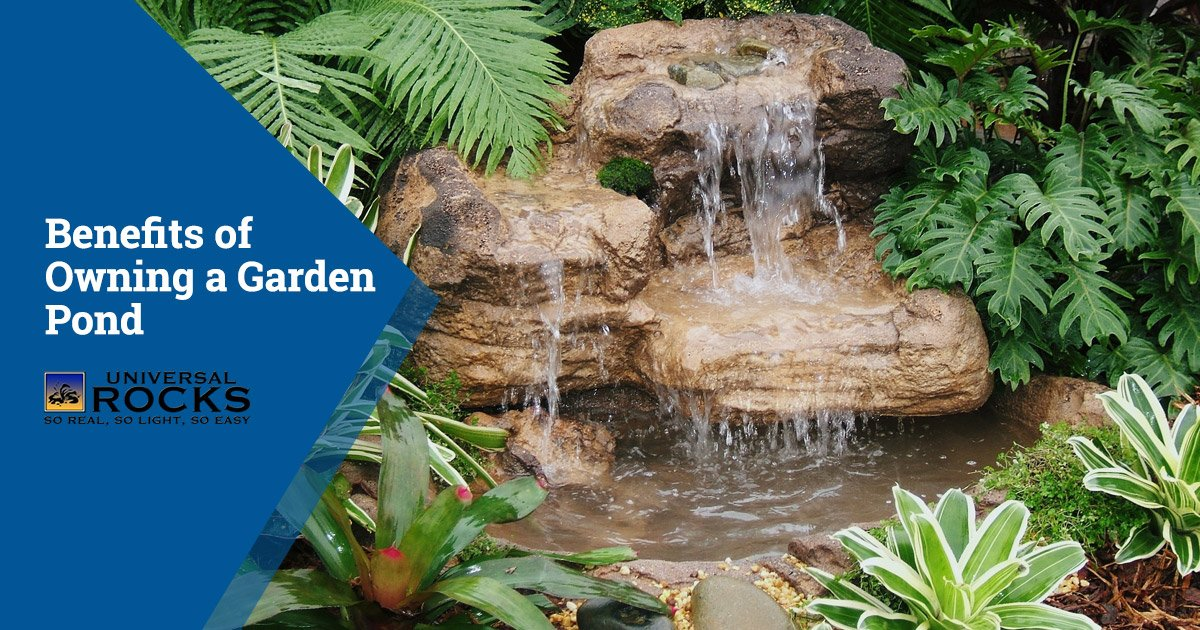 Benefits of Owning a Garden Pond