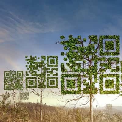 qr codes for medical marketing