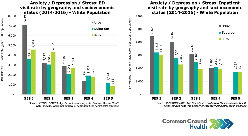 Anxiety/Depression/Stress: ED & Inpatient Visit Rate by Geography & Socioeconomic Status, White Population