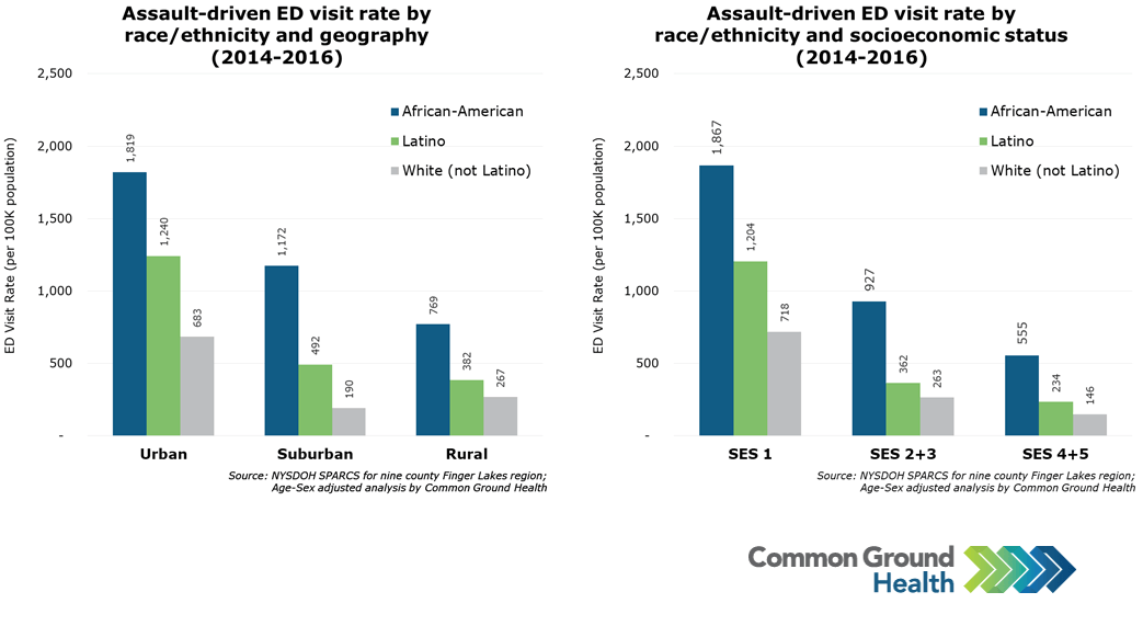 Assault-Driven Emergency Department Visit Rate by Race/Ethnicity, Geography and Socioeconomic Status