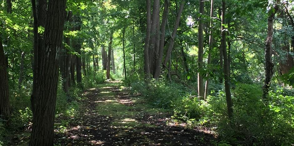 Greenway can improve health and reduce disparities, impact study finds