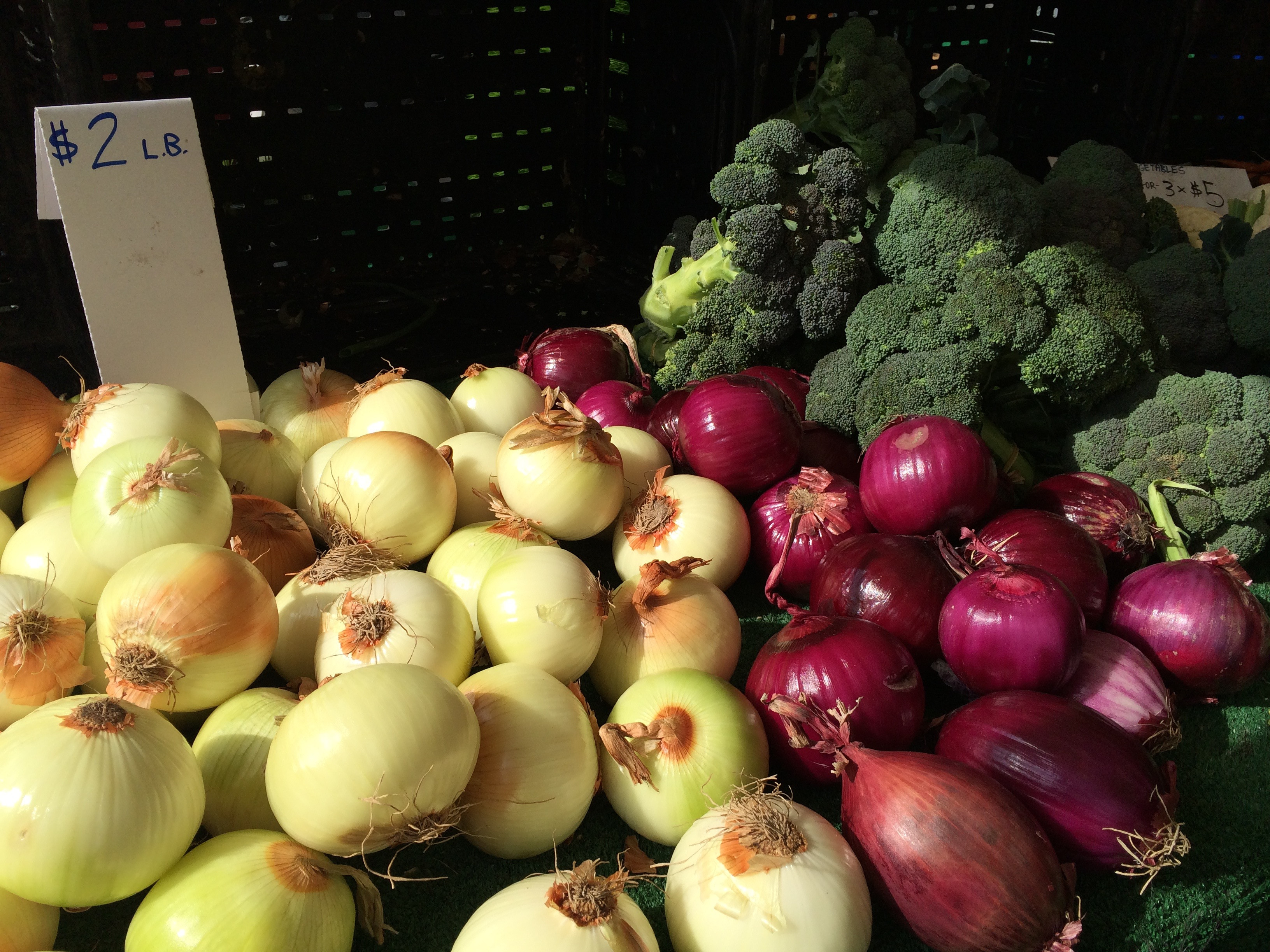 City seeking applicants for Food Policy Council