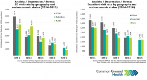 Anxiety/Depression/Stress: ED & Inpatient Visit Rate by Geography & Socioeconomic Status