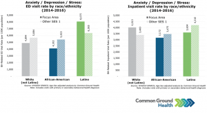 Anxiety/Depression/Stress: ED & Inpatient Visit Rate by Race/Ethnicity