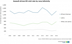 Assault-Driven Emergency Department Visit Rate by Race/Ethnicity