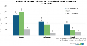 Asthma-Driven ED Visit Rate by Race/Ethnicity and Geography