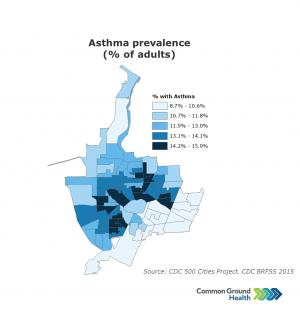 Asthma Prevalence (% of Adults)