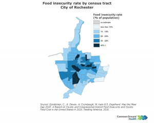 Food Insecurity Rate by Census Tract