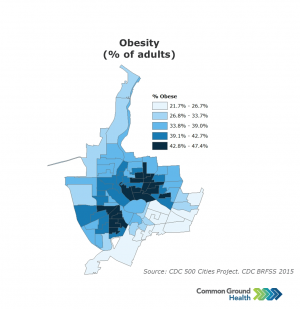 Obesity (% of Adults)