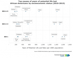 Top Causes of Years of Potential Life Lost - African-American by Socioeconomic Status