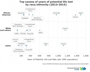 Top Causes of Years of Potential Life Lost by Race/Ethnicity