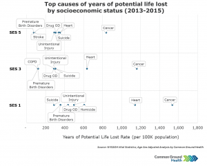 Top Causes of Years of Potential Life Lost by Socioeconomic Status