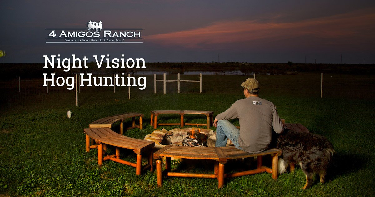A Short Guide to the Night Vision Hog Hunt