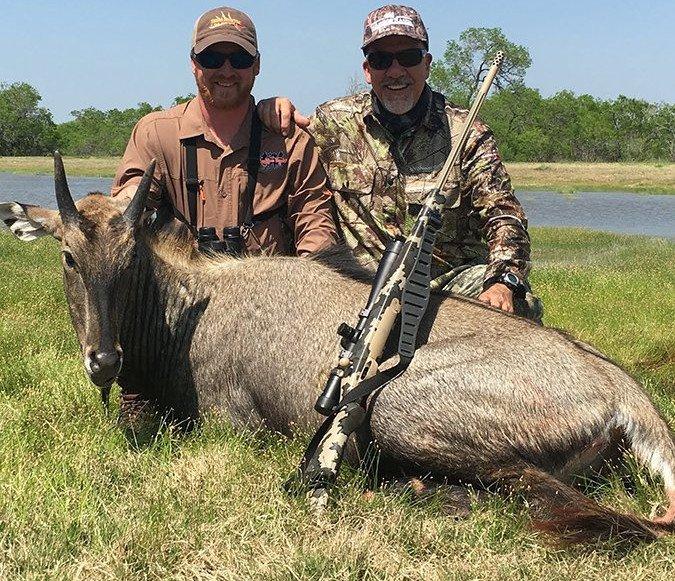 nilgai hunting in Texas