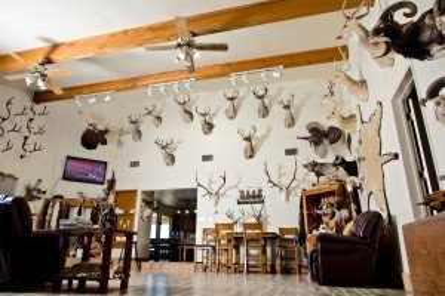 Hunting Lodge - Living Room
