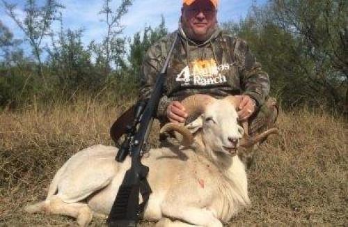 Ram Hunting