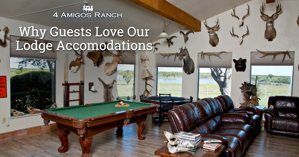 Why Guests Love 4 Amigos Ranch Lodge and Accommodations
