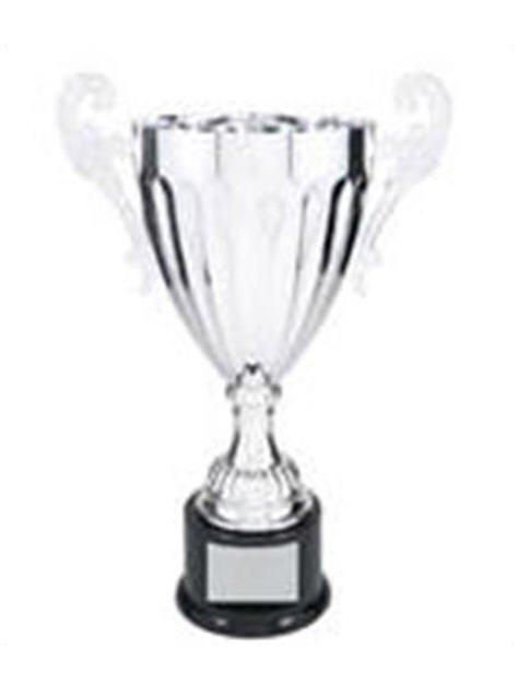 Silver Award Cup