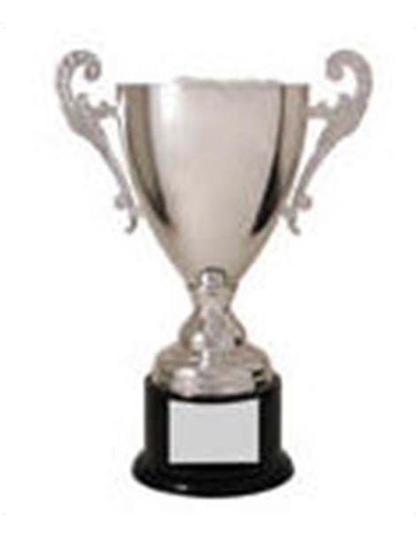 Silver Metal Loving Cup