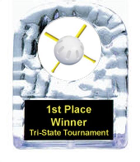 Wiffle Ball Cracked Ice Award
