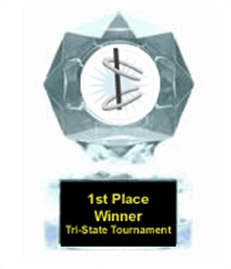 Horseshoe Clear Star Award