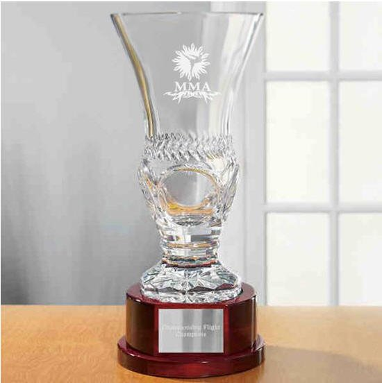 Mixed Martial Arts Palais Trophy