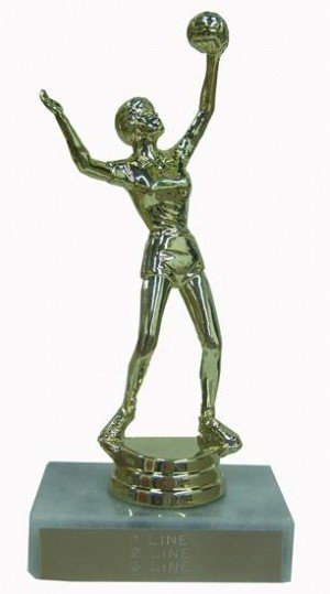 Volleyball Award Trophy