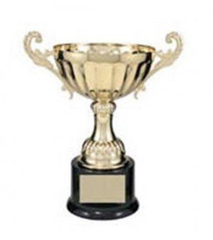 Gold Metal Cup with Handles