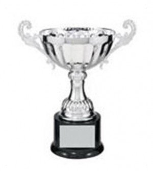 Silver Metal Cup with Handles