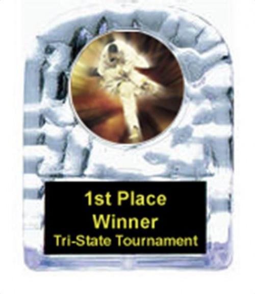 Karate Cracked Ice Trophy
