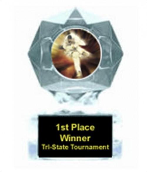 Karate Clear Star Trophy