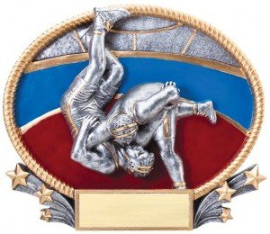 Wrestling 3D Oval Trophy