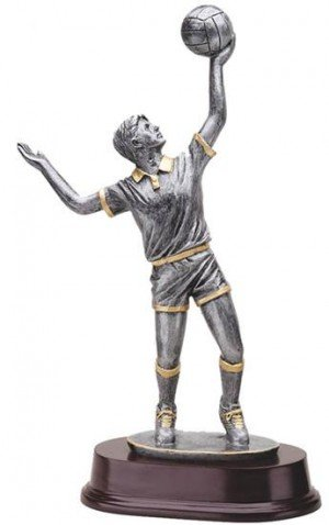 Male Volleyball 11 Inch Trophy