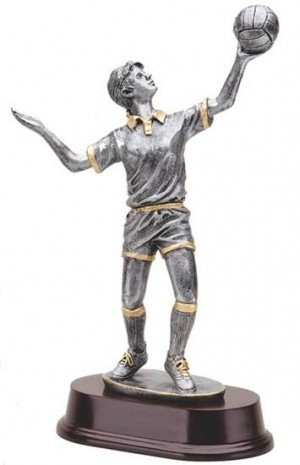 Female Volleyball 11 Inch Trophy
