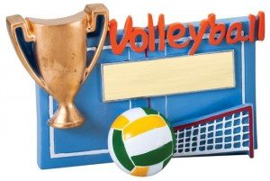 Volleyball Winners Cup Resin Trophy