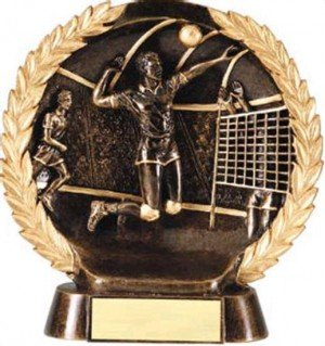 Male Volleyball Trophy 7 1/2 Inch
