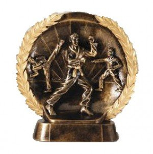 Male Karate Trophy 7 1/2 Inch