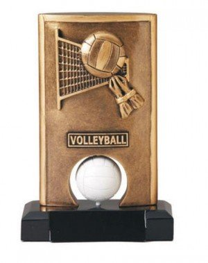 Volleyball Spinning Trophy