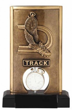 Track Spinning Trophy