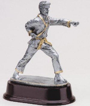 Male Karate Strike Trophy
