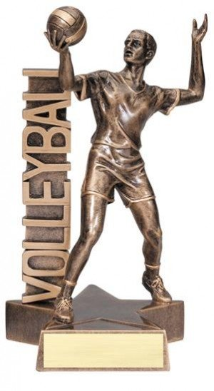 Male Volleyball Player Billboard Trophy