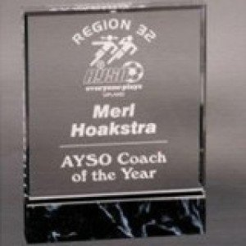 Acrylic Fusion Award