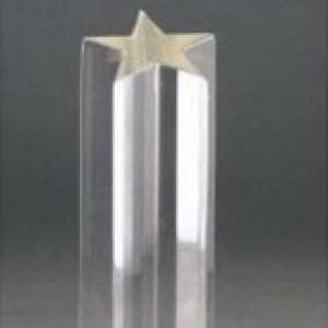Acrylic Mirrored Star Award