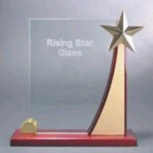 Rising Star Glass Award