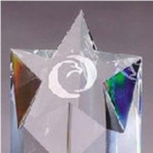Crystal Star Tower Award 9 Inch