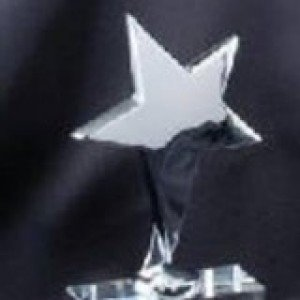 Crystal Silver Star Award