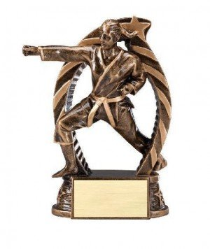 Karate Female Star Flame Resin Trophies