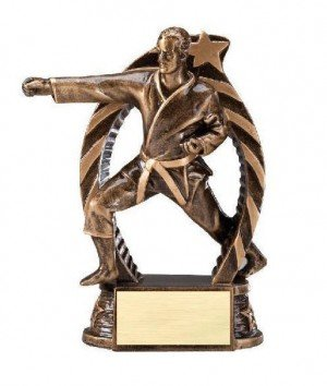 Karate Male Star Flame Resin Trophies