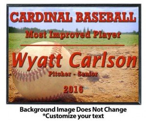 Baseball Sublimated Plaque