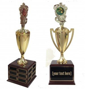 Billiard 1 Traveling Trophy